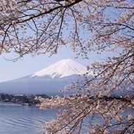 杭州-静冈 5天往返含税机票