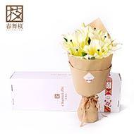 春舞枝黄粉百合 约7-10朵