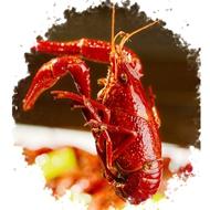 熟食麻辣小龙虾净虾2斤装