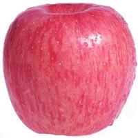 券友专享:砀山红富士苹果10斤