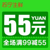苏宁自营满99减55元优惠券