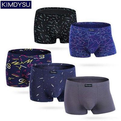 5条金迪仕男士平角裤