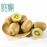 四川蒲江黄心猕猴桃果15个