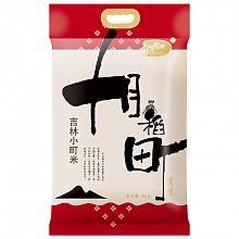 十月稻田 小町米 5kg*2件