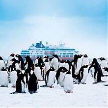 双11预售:飞猪旅行 南极专线 官方包船
