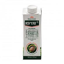 限陕西:银桥 阳光冠  生榨核桃牛奶 1瓶250ml