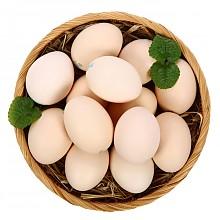 限地区:晋龙 鲜鸡蛋 六无蛋 16枚